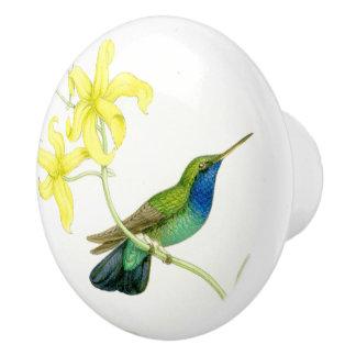 Hummingbird Bird Flower Floral Garden Knob
