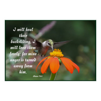 Hummingbird Bird Flower Floral Hosea 14:4 Healed Poster