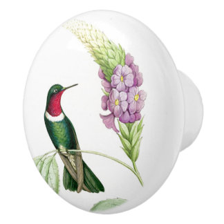Hummingbird Bird Flowers Floral Botanical Ceramic Knob