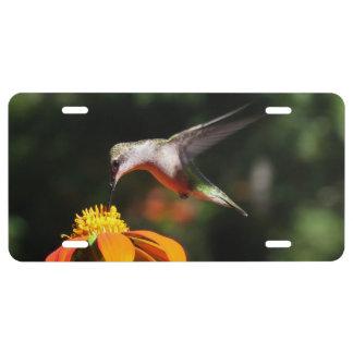 Hummingbird Bird Sunflower Flower Floral Garden License Plate