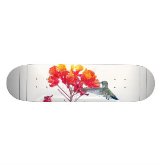 Hummingbird Bird Wildlife Animal Floral Skate Board Deck