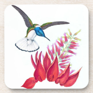 Hummingbird Bird Wildlife Animal Flowers Coaster