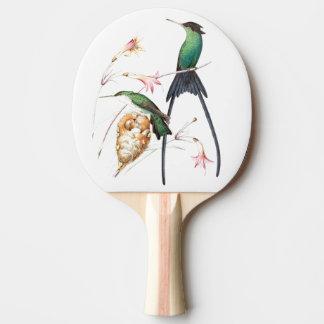Hummingbird Bird Wildlife Animal Flowers Paddle Ping Pong Paddle