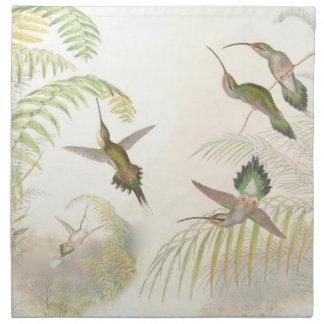 Hummingbird Bird Wildlife Animals Leaves Napkins