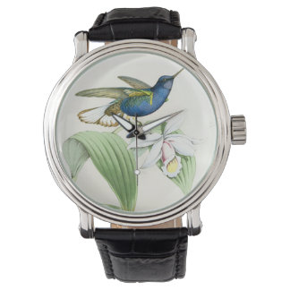 Hummingbird Bird Wildlife Floral Flowers Watch