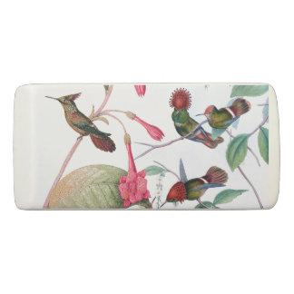 Hummingbird Birds Animals Flowers Garden Eraser