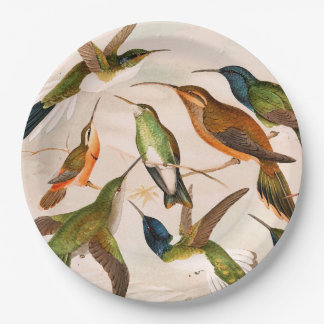 Hummingbird Birds Animals Wildlife Paper Plates