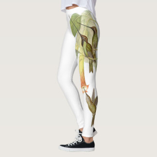 Hummingbird Birds Flowers All Over Print Leggings