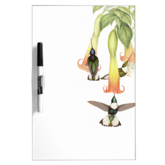 Hummingbird Birds Flowers Dry Erase Board