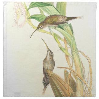 Hummingbird Birds Flowers Wildlife Floral Animals Napkin