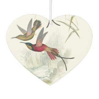 Hummingbird Birds Wildlife Animals Air Freshener