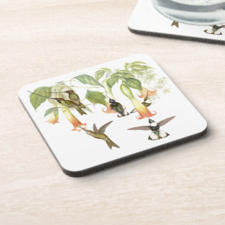 Hummingbird Birds Wildlife Animals Flowers Coaster