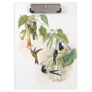 Hummingbird Birds Wildlife Animals Flowers Floral Clipboard