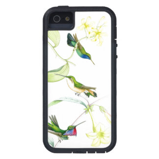 Hummingbird Birds Wildlife Animals Flowers Floral iPhone 5 Cover