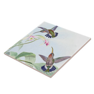 Hummingbird Birds Wildlife Animals Flowers Tile