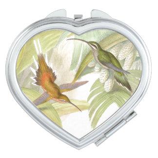Hummingbird Birds Wildlife Animals Flowers Travel Mirrors