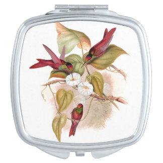 Hummingbird Birds Wildlife Animals Flowers Vanity Mirror