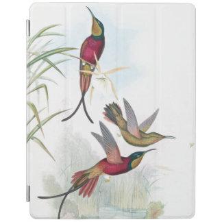 Hummingbird Birds Wildlife Animals Ipad Cover