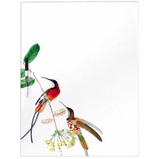 Hummingbird Birds Wildlife Dry Erase Board
