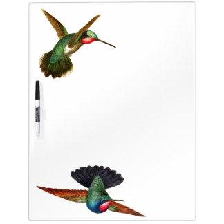 Hummingbird Birds Wildlife Erase Board