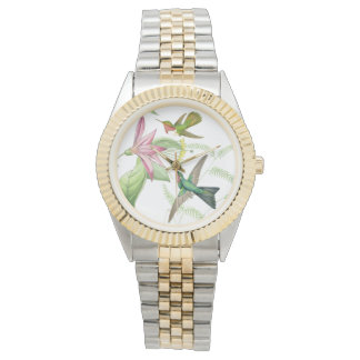 Hummingbird Birds Wildlife Floral Flowers Watch