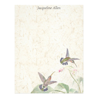 Hummingbird Birds Wildlife Flowers Letterhead