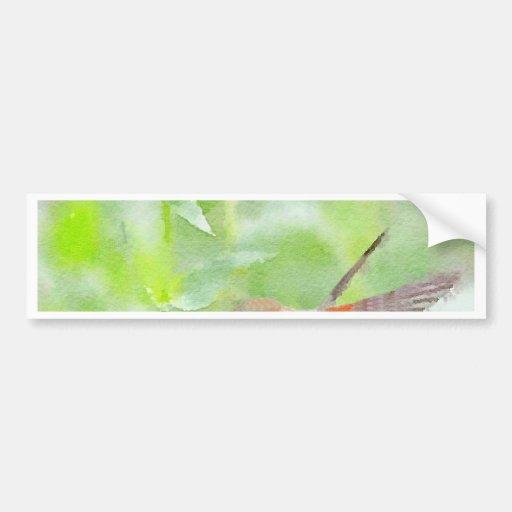Hummingbird Bumper Stickers