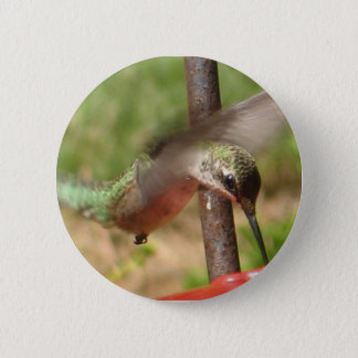 Hummingbird Button