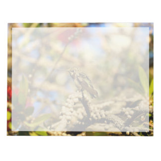 Hummingbird, California, Photo with border Notepad