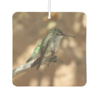 Hummingbird Car Air Freshener