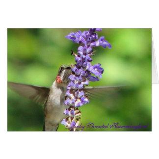 Hummingbird Card 2