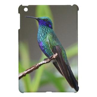 hummingbird case for the iPad mini