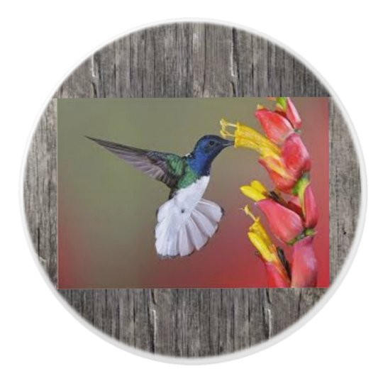Hummingbird Ceramic Cabinent Knob and Pulls Ceramic Knob