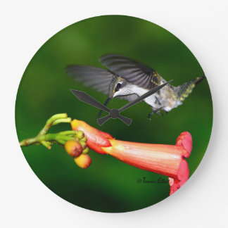 Hummingbird Clock