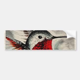 Hummingbird Comic Bumper Sticker