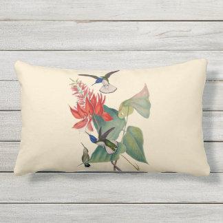 Hummingbird Coral Bean Outdoor Lumbar Pillow