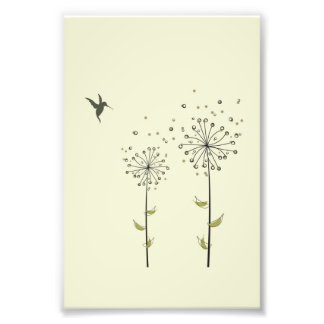 Hummingbird & Dandelion Art Photo