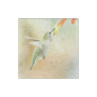 Hummingbird early morning flight stone magnets