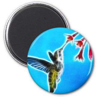 Hummingbird Eating Nectar Magnet