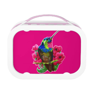 Hummingbird hand drawing bright illustration. Neon Lunch Box