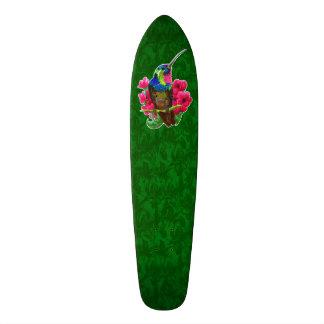 Hummingbird hand drawing bright illustration. Neon Skateboard Decks