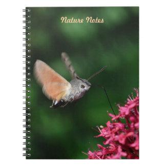 Hummingbird hawk-moth hovering spiral notebook
