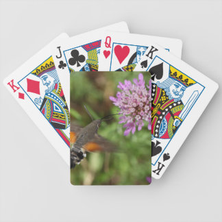 Hummingbird hawk-moth (Macroglossum stellatarum) Bicycle Playing Cards