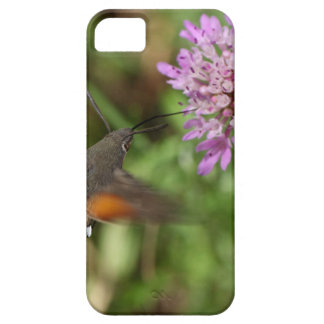 Hummingbird hawk-moth (Macroglossum stellatarum) iPhone 5 Cases