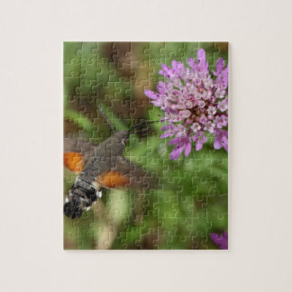 Hummingbird hawk-moth (Macroglossum stellatarum) Puzzle