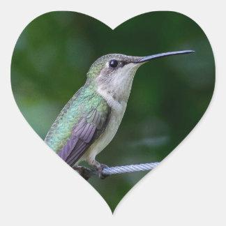 Hummingbird - Heart Sticker, Glossy Heart Sticker