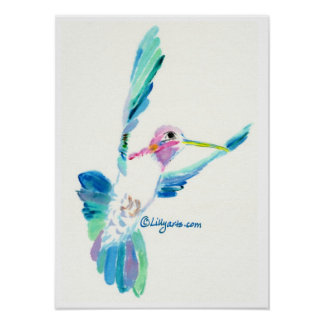 Hummingbird Hover Print and Poster