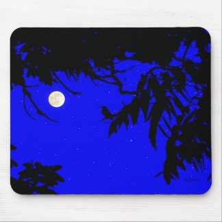 Hummingbird In Early Moonlit Evening Mouse Pad