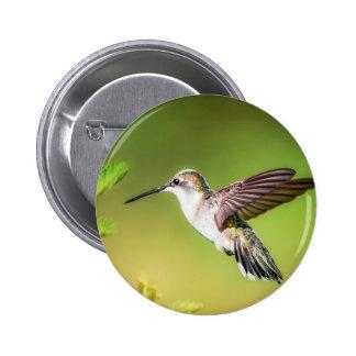 Hummingbird in flight 2 inch round button