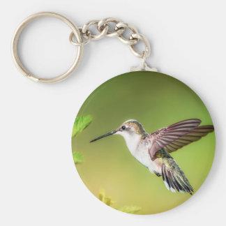 Hummingbird in flight basic round button keychain